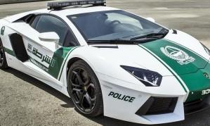 dubai_police